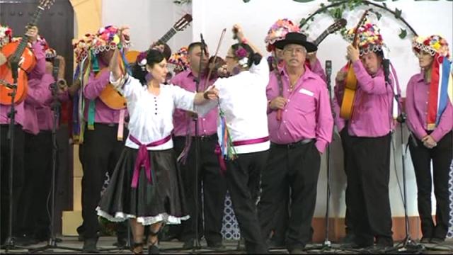 Panda Montes de Guadalmedina (Fiesta Mayor de Verdiales 2010)